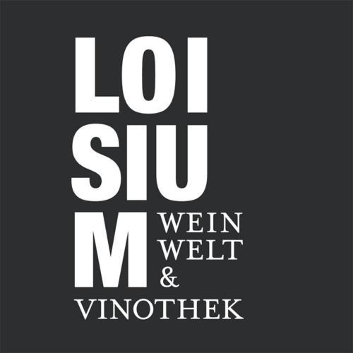 Die-Internette---Referenzen---Loisium-Weinwelt